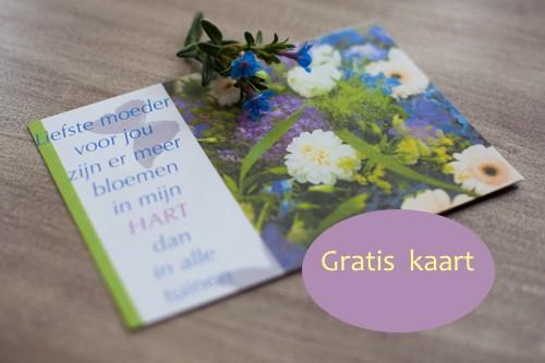 moederdag-kaart-boukje canaan-9769