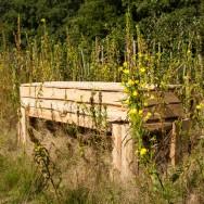 Natuurlijke kist