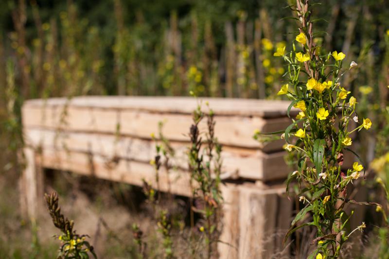 Natuurbegraafplaats Weverslo houdt ideëendag