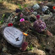Begraven in  natuurlijke omgeving